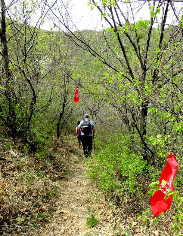 After a steep start, the trail flattened out - Camping at the Great Wall Spur, 2017/4/19
