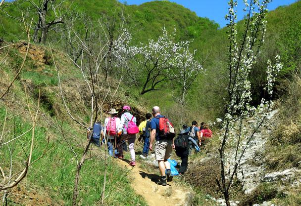 Hiking up to the Great Wall - Earth Day clean up hike at the Jiankou Great Wall, 2017/4/23