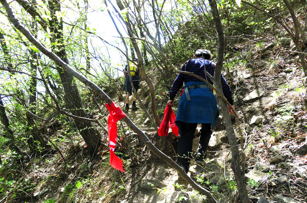On a steeper trail through the forest - Earth Day clean up hike at the Jiankou Great Wall, 2017/4/23