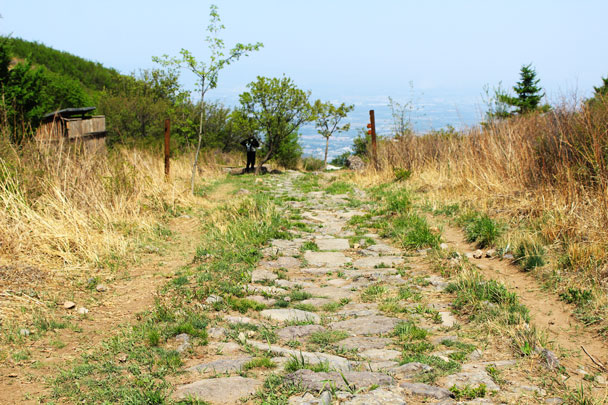 The paved pilgrim's trail leads down to Beijing -