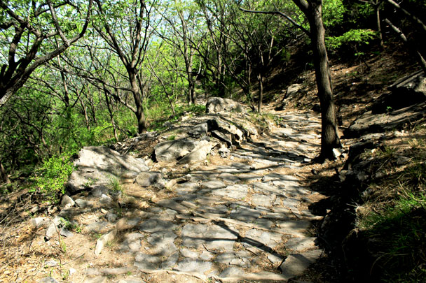 The trail was funded by donations from rich people and (allegedly) a eunuch -