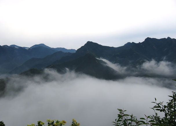 After rain during the night, the next morning we saw a sea of clouds below - Great Wall Spur Camping Trip, 2017/05/29