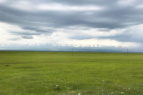 long distance trip! Bayinbuluke Grasslands, Xinjiang Province, 2017/6/20-25 photo #22