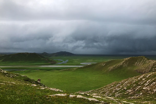 long distance trip! Bayinbuluke Grasslands, Xinjiang Province, 2017/6/20-25 photo #30