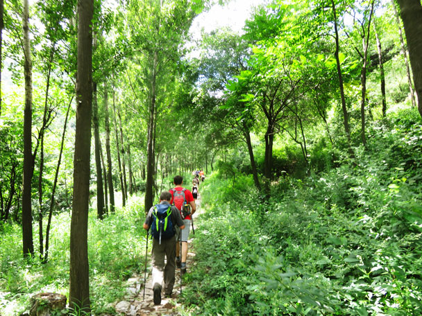 We hiked further up, heading for the Great Wall - Stone Valley Great Wall, 2017/7/29