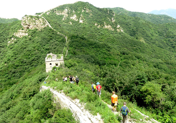 We continued along the Great Wall. It's in rough condition, and overgrown with grass and weeds - Stone Valley Great Wall, 2017/7/29