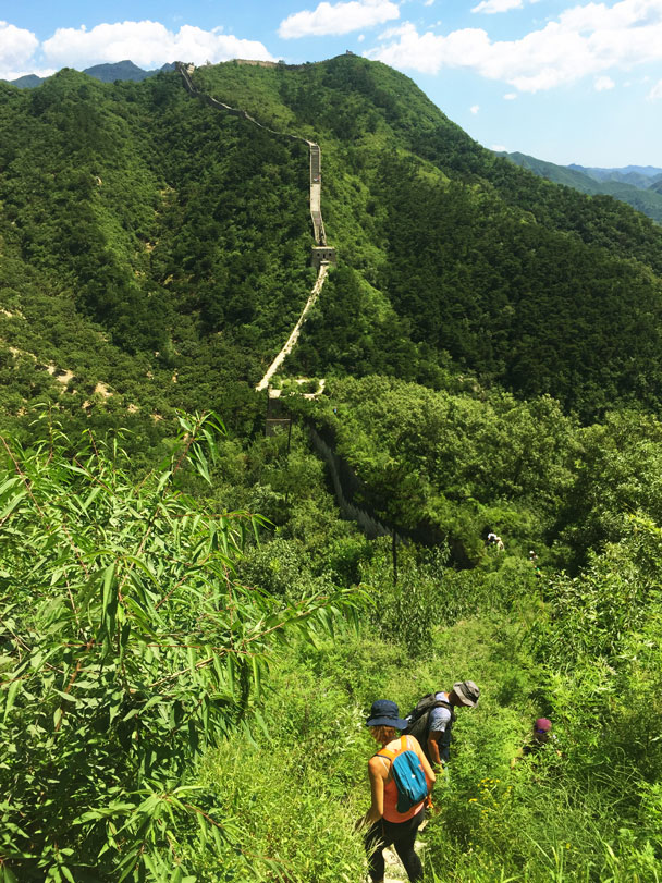 In front of us is the last steep part -  abig climb up to the top - Walled Village to Huanghuacheng Great Wall Hike, 2017/08/06