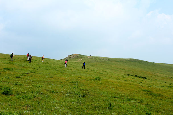 Bashang Grasslands, Hebei Province, 2017/08/11-12 photo #8