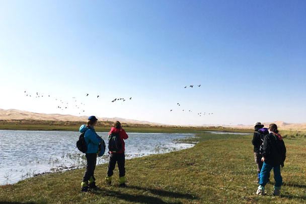 Birds above the lake - Alashan Desert Lakes and Temple, Inner Mongolia, 2017/10