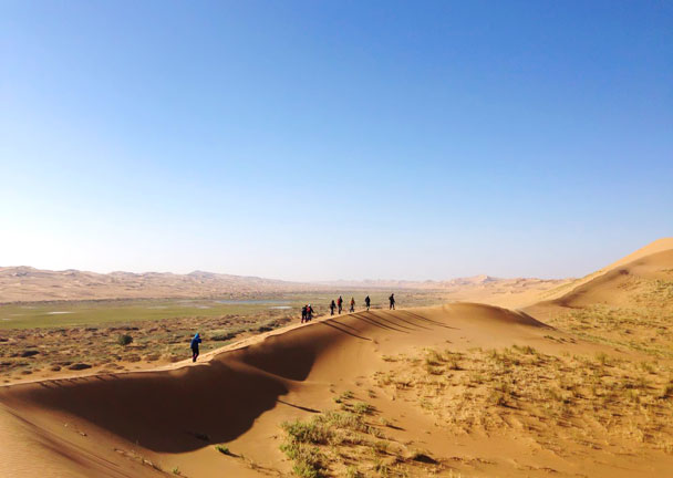 Hiking through the dunes by an oasis - Alashan Desert Lakes and Temple, Inner Mongolia, 2017/10