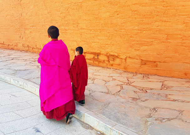 Young monks on the way to their studies - Unveiling the Buddha at Labrang Monastery, 2018/02