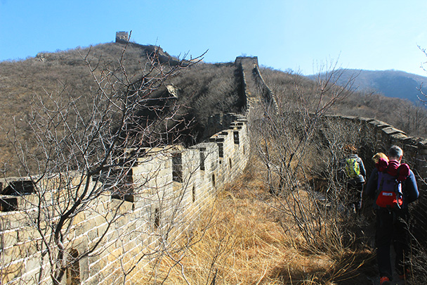 Trees and grass are taking over this part of the wall - Chinese Knot Great Wall, 2018/03/10