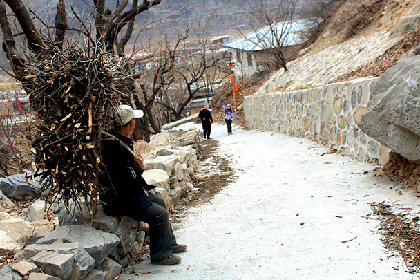 On our way up to the Great Wall at Zhuangdaokou we passed a farmer carrying out a load of firewood - Big Black Mountain to the Walled Village, 2018/03/11