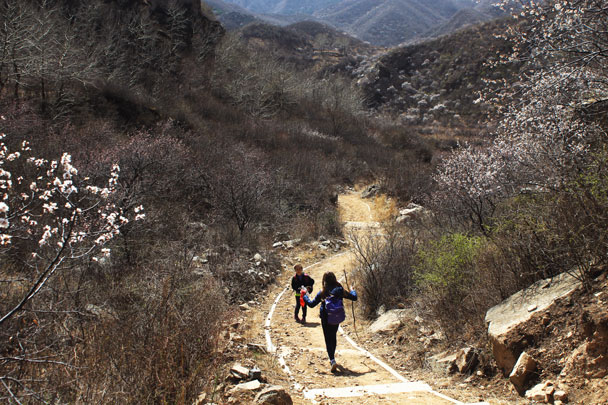 Hiking back down to finish the loop - Girl Scouts hike at Changyucheng, 2018/04/14