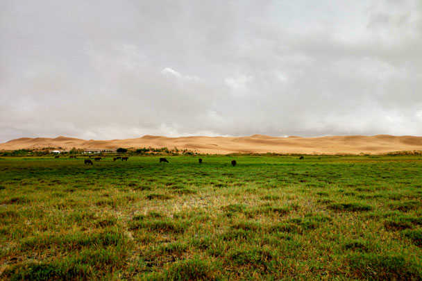 Tengger Desert Lakes, Inner Mongolia, 2018/07/19-22 photo #10
