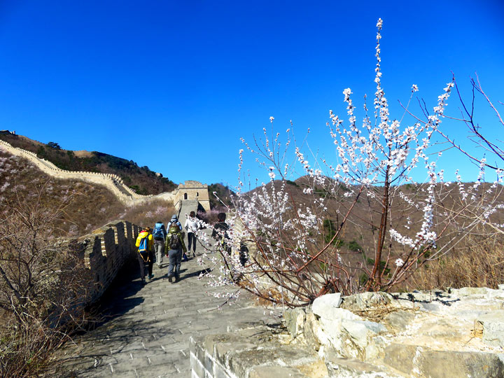 Great Wall Huanghuacheng to the Walled Village, 2019/03/21 photo #5