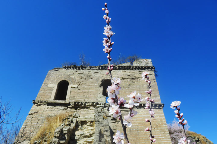 Great Wall Huanghuacheng to the Walled Village, 2019/03/21 photo #10