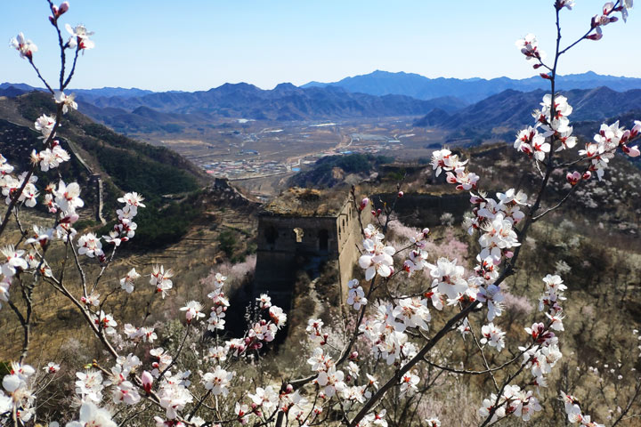 Great Wall Huanghuacheng to the Walled Village, 2019/03/21 photo #14