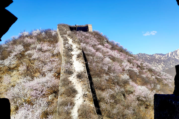 Great Wall Huanghuacheng to the Walled Village, 2019/03/21 photo #15