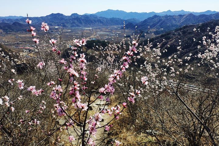 Great Wall Huanghuacheng to the Walled Village, 2019/03/21 photo #16