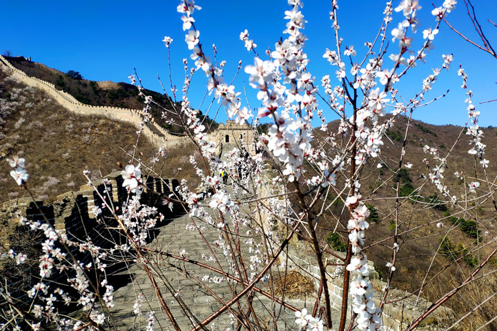 Great Wall Huanghuacheng to the Walled Village, 2019/03/21 photo #21