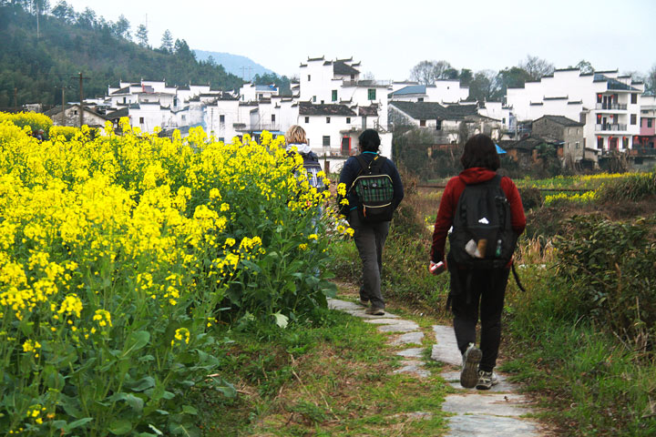Wuyuan 'Fields of Flowers', Jiangxi Province, 2019/03/14-16 photo #13