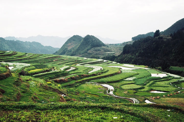 Guizhou Miao and Dong culture in the mountains (5 days), 2019/04/03 photo #4