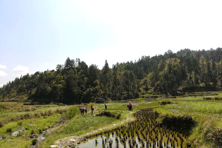 Guizhou Miao and Dong culture in the mountains (5 days), 2019/04/03 photo #21