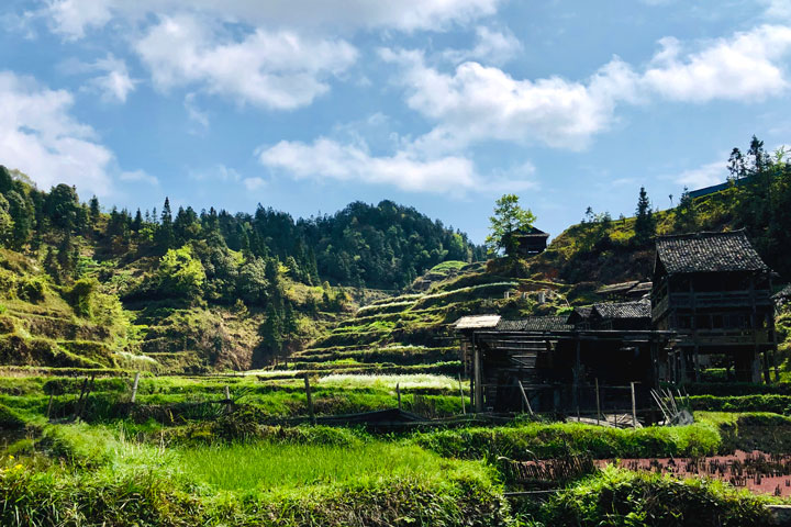 Guizhou Miao and Dong culture in the mountains (5 days), 2019/04/03 photo #26