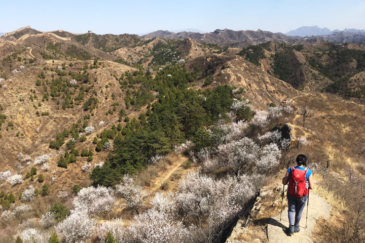 Camping Gubeikou Great Wall and Jinshanling Great Wall, 2019/04/06 photo #5