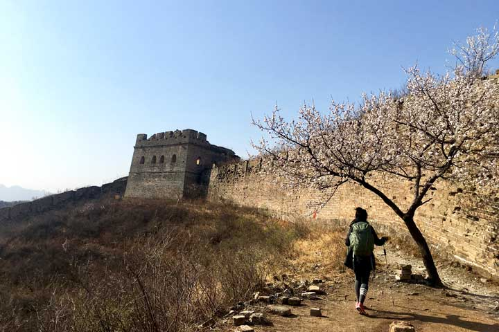 Camping Gubeikou Great Wall and Jinshanling Great Wall, 2019/04/06 photo #23
