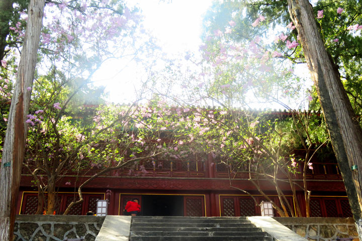 Walk Down The Incense Trail to Dajue Temple, 2019/04/07 photo #13