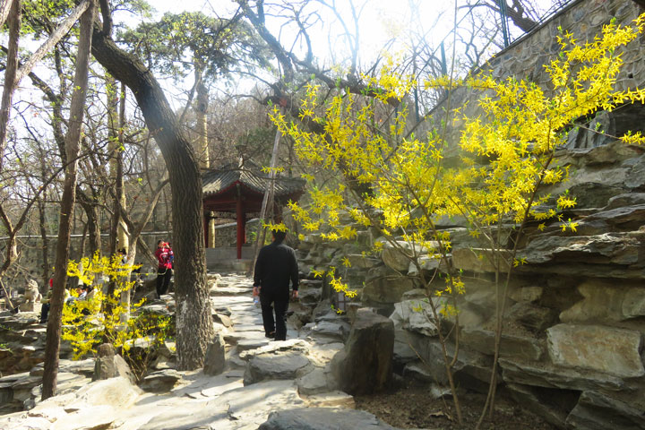 Walk Down The Incense Trail to Dajue Temple, 2019/04/07 photo #15