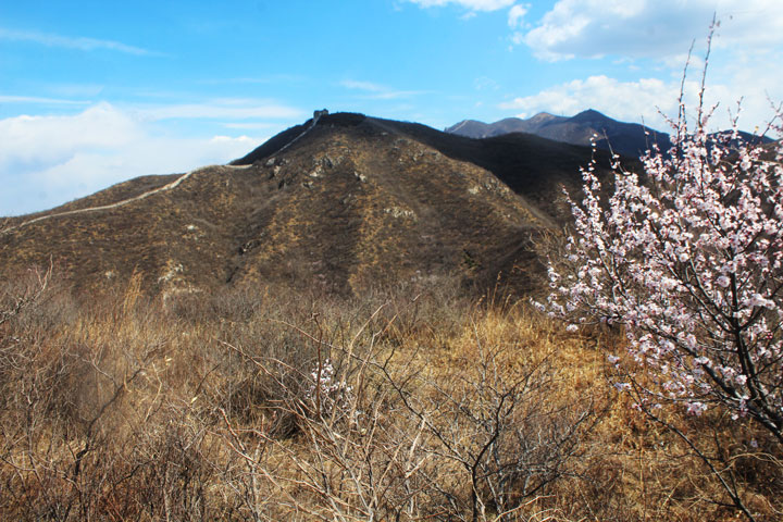 Stone vally Great Wall, 2019/04/11 photo #6