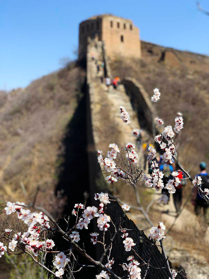 Gubeikou to Jinshanling Great Wall East, 20190414 photo #18