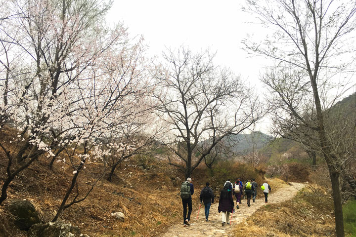 SwitchBack Great Wall Camping, 2019/04/20 photo #16