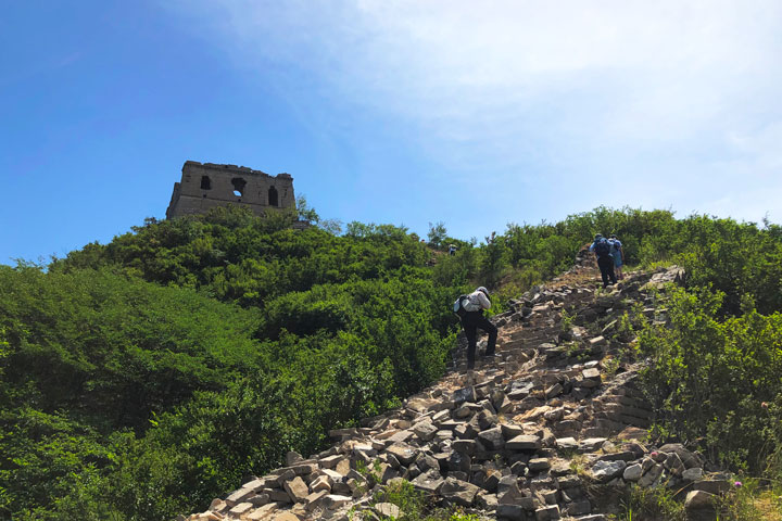 Switchback Great Wall, 2019/06/07 photo #13