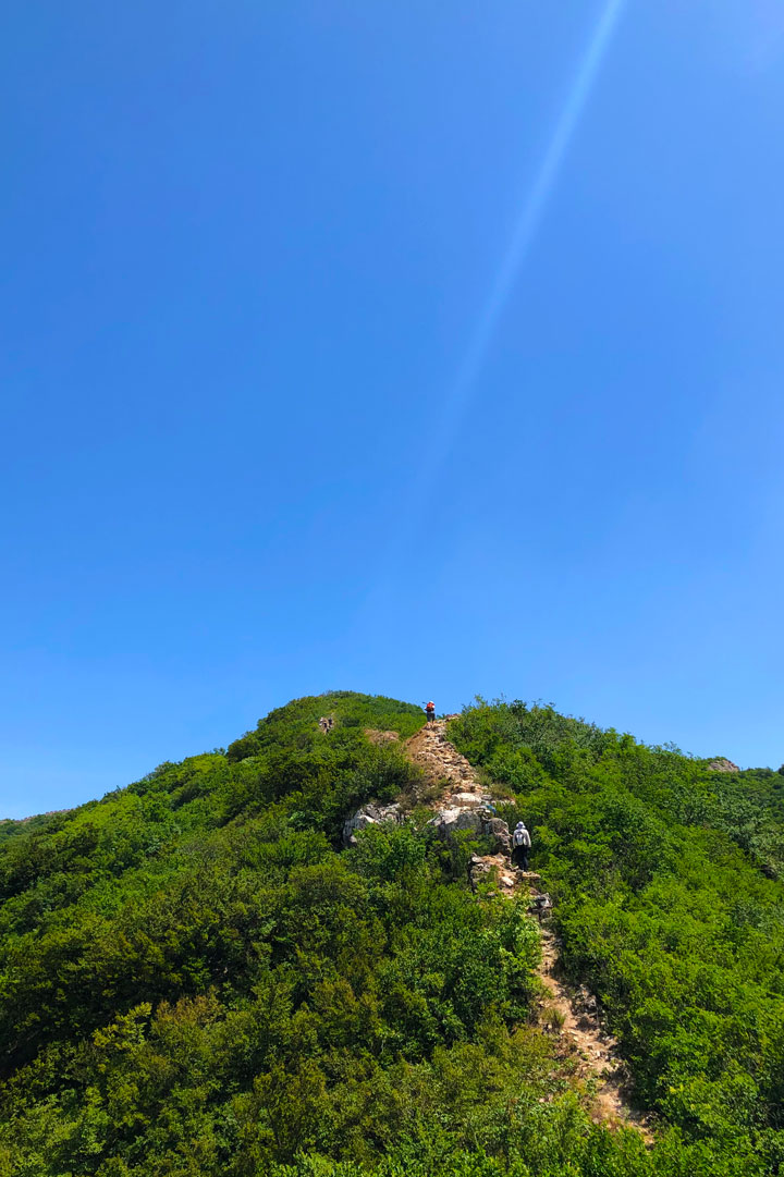 Switchback Great Wall, 2019/06/07 photo #21