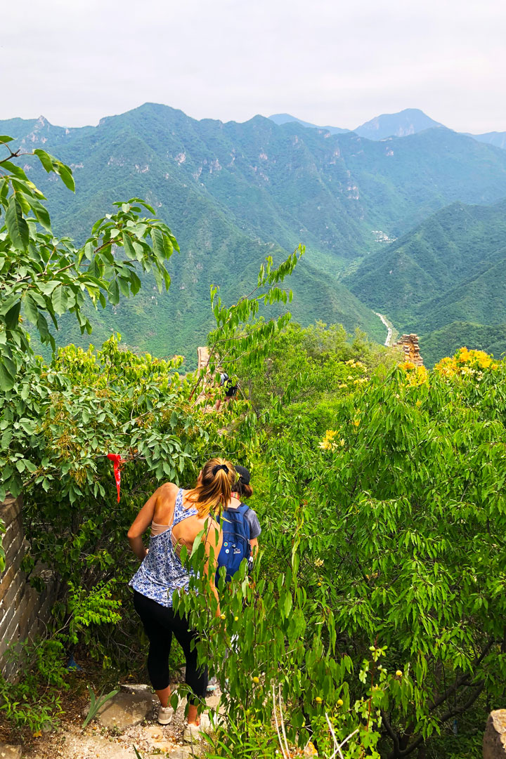 Chinese Knot Great Wall, 2019/06/15 photo #1