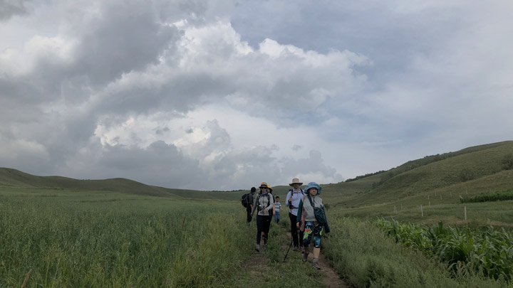 Bashang Grasslands, August 2019 photo #4