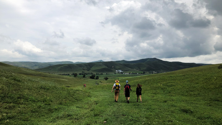 Bashang Grasslands, August 2019 photo #12