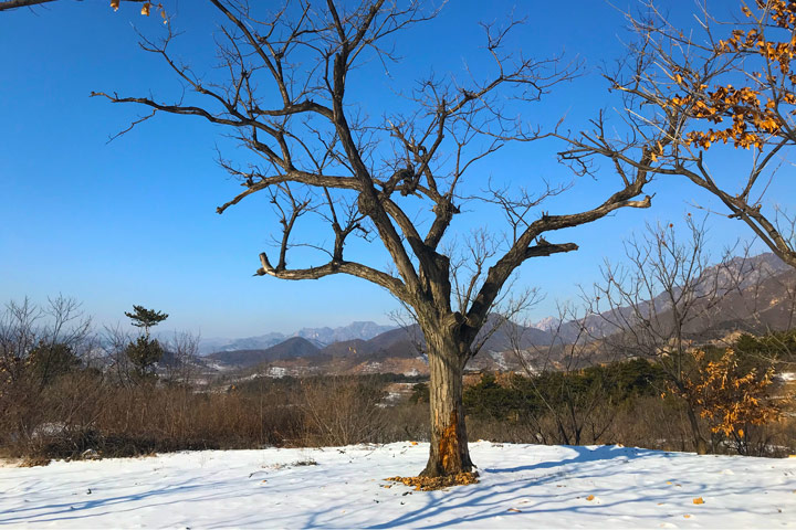Auspicious Village hike, 2019/12/21 photo #7