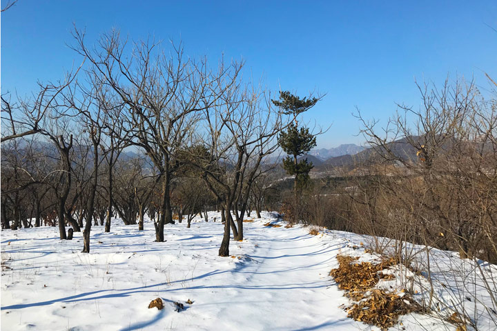 Auspicious Village hike, 2019/12/21 photo #10
