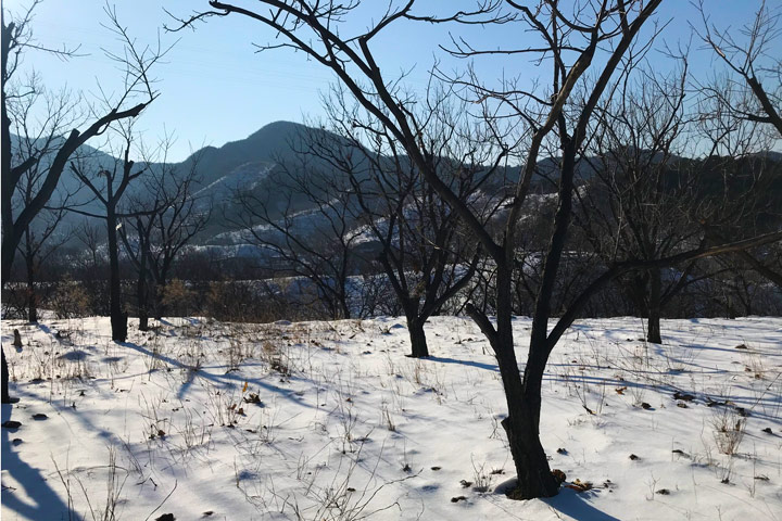 Auspicious Village hike, 2019/12/21 photo #11
