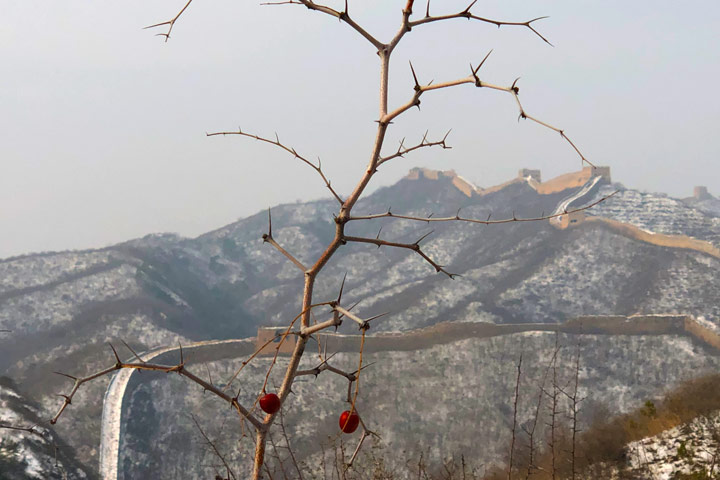 Hemp Village to Gubeikou Great Wall Christmas, 2019/12/25 photo #9