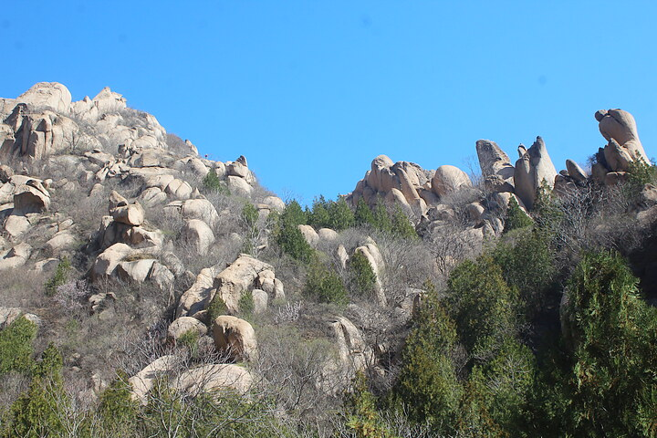 Phoenix Ridge Scenic Area, 2020/03/22 photo #5