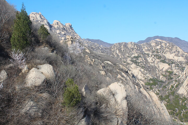 Phoenix Ridge Scenic Area, 2020/03/22 photo #28