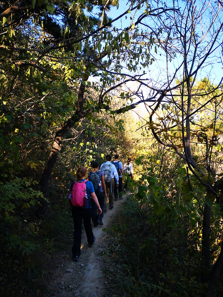 Through the Hills to the Forest Park, 2020/10/24 photo #2