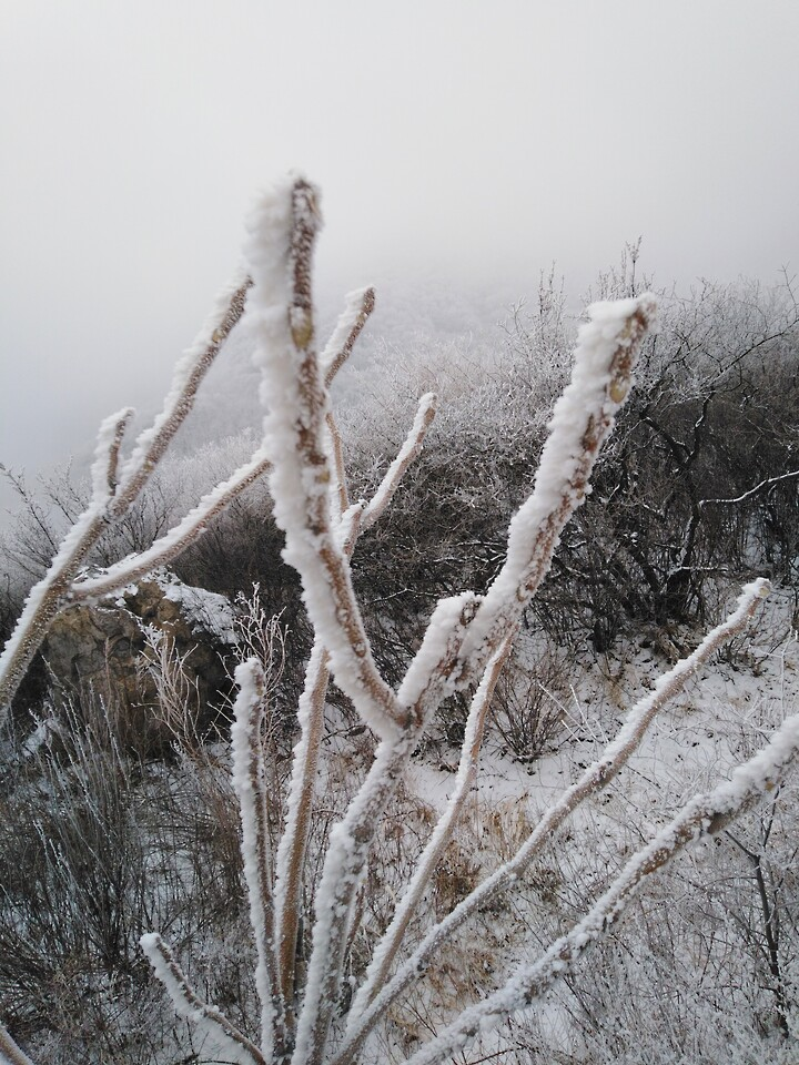 Snowy Badaling Ancient Great Wall, 2021/02/24 photo #18