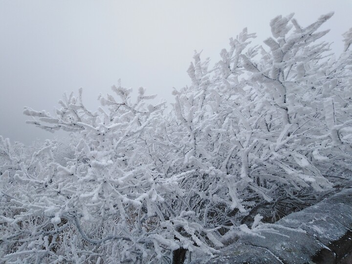 Snowy Badaling Ancient Great Wall, 2021/02/24 photo #28